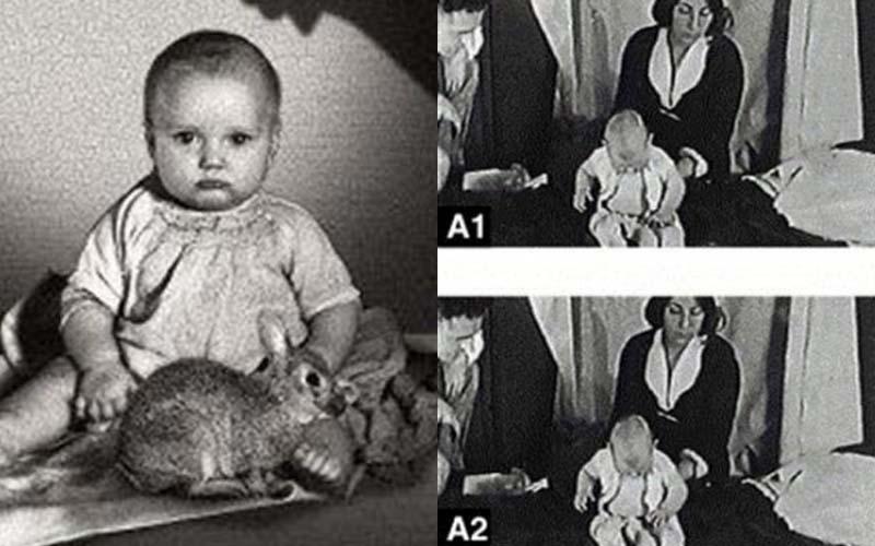 僅僅只有八個月大的男娃被媽媽賣給科學家作實驗,但後果卻讓這位媽媽崩潰喚不回..  -