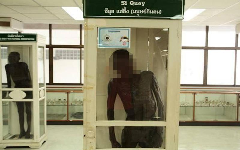 泰國「連環食童魔」判死槍斃仍難熄眾怒,製成乾屍放博物館供人唾棄60年!