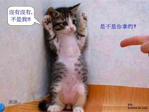別動!舉起手來..-0