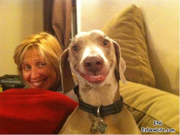 這隻狗真的會拍照!!-0